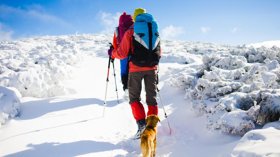 Jak chronić ciało przed wyziębieniem podczas wycieczek górskich