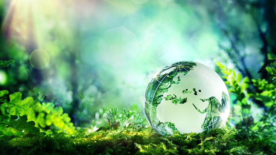 Jak stać się bardziej ekologiczną osobą?
